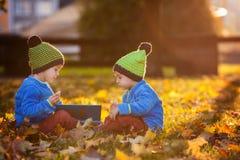Dos muchachos, leyendo un libro en un césped por la tarde Imagen de archivo