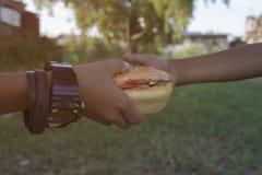 Dos muchachos que comen las hamburguesas Fotos de archivo