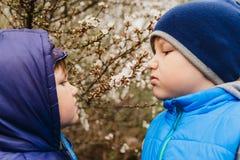 Dos muchachos que huelen las flores de cerezo en la primavera imagen de archivo