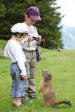 Dos muchachos y marmotas en las montañas Imagenes de archivo