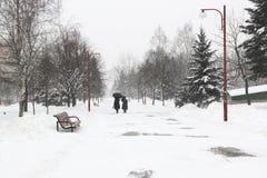 Paseo de dos mujeres a través del parque en nieve Fotografía de archivo libre de regalías