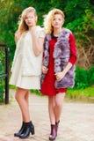 Dos mujeres de moda al aire libre Foto de archivo libre de regalías