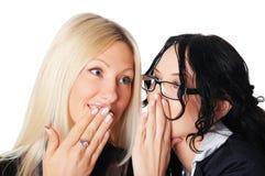 Dos mujeres de negocios encantadoras imagen de archivo libre de regalías