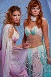 Dos mujeres del duende Foto de archivo