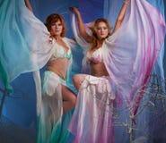 Dos mujeres del duende Foto de archivo libre de regalías