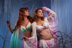 Dos mujeres del duende que esperan algo Imagenes de archivo