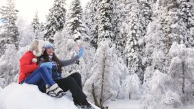 Dos mujeres felices que se sientan cerca de un río de la montaña en el bosque del invierno y que toman selfies en un smartphone almacen de metraje de vídeo