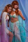 Dos mujeres hermosas del duende en bosque mágico Imagenes de archivo