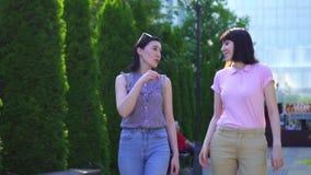 Dos mujeres hermosas jovenes que caminan en el parque y comunicar en lenguaje de signos almacen de metraje de vídeo
