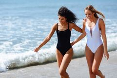 Dos mujeres jovenes con los cuerpos hermosos en traje de baño en una playa tropical foto de archivo libre de regalías