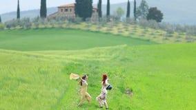 Dos mujeres jovenes con panamas que caminan en el campo y el abrazo verdes almacen de video