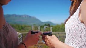 Dos mujeres jovenes en el vino tinto de consumición del balcón - disfrutar de la vista de montañas y del bosque almacen de video