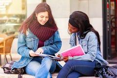 Dos mujeres jovenes estudian en un banco fotografía de archivo libre de regalías