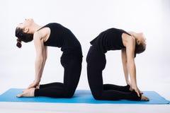 Dos mujeres jovenes que hacen el árbol del asana de la yoga presentan Vrikshasana aislado en el fondo blanco imágenes de archivo libres de regalías