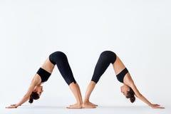 Dos mujeres jovenes que hacen el perro boca abajo del asana de la yoga Fotos de archivo
