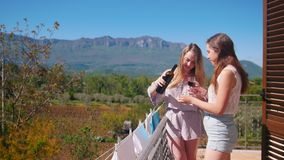 Dos mujeres jovenes que se colocan en el balcón y el vino de colada en los vidrios almacen de metraje de vídeo