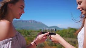 Dos mujeres jovenes que se colocan en el vino tinto de consumición del balcón - alegrías - una vista de montañas y del bosque almacen de metraje de vídeo