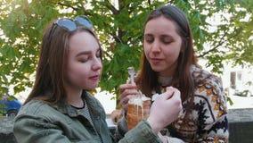 Dos mujeres jovenes que se sientan en el parque y que comen el helado checo almacen de metraje de vídeo