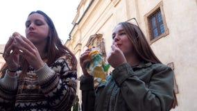 Dos mujeres jovenes que se sientan en el parque y que comen el helado checo almacen de video