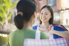 Dos mujeres maduras que hablan en alameda de compras Imagen de archivo
