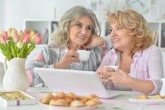 Dos mujeres mayores que usan el ordenador portátil Imagen de archivo libre de regalías