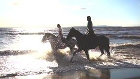 Dos mujeres montan en caballo en la playa del río en luz de la puesta del sol del agua almacen de video