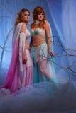 Dos mujeres pensativas del duende en bosque mágico Foto de archivo libre de regalías