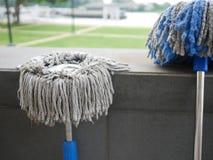 Dos multitudes sucias asolean el baño de lavarse limpio en el parque al aire libre o el GA Foto de archivo
