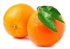 Dos naranjas aisladas en el fondo blanco Fotografía de archivo libre de regalías