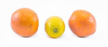 Dos naranjas y un limón en una vista delantera lateral y blanca del fondo - Fotos de archivo