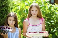 Dos niñas con las cerezas y las frambuesas Fotografía de archivo libre de regalías
