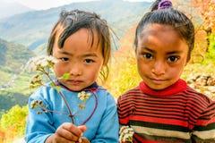 Dos niñas en Nepal que sostiene las flores en sus manos Imagenes de archivo