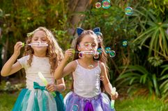 Dos niñas hermosas felices que juegan con las burbujas de jabón en una naturaleza del verano, una muchacha están llevando un tigr Imagen de archivo libre de regalías