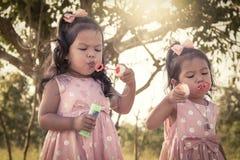 Dos niñas lindas que tienen burbujas que soplan de la diversión en el parque Imagenes de archivo
