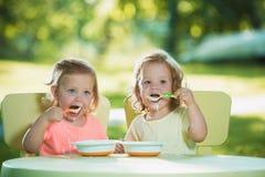 Dos niñas que se sientan en una tabla y que comen junto contra césped verde Foto de archivo