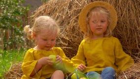 Dos niñas se sientan en un pajar almacen de metraje de vídeo