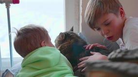 Dos niños con un gato mienten en el piso y miran hacia fuera la ventana La amistad entre los animales domésticos y los niños almacen de video