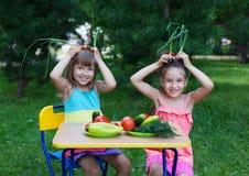 Dos niños felices de los niños de las muchachas que llevan sostenerse hermoso de los vestidos imagen de archivo libre de regalías