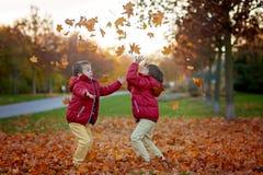 Dos niños, hermanos del muchacho, jugando con las hojas en parque del otoño Foto de archivo