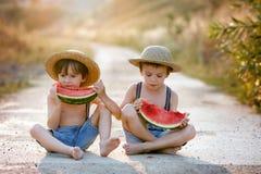 Dos niños pequeños lindos, comiendo la sandía en una trayectoria del pueblo rural Fotografía de archivo