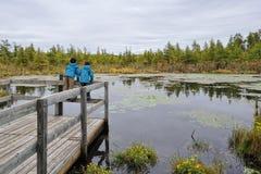 Dos niños que estudian la naturaleza en un ambiente del pantano Foto de archivo