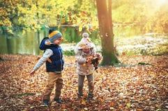 Dos niños que juegan con las hojas en bosque Foto de archivo