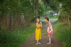 Dos niñas que se divierten que habla en el parque El caminar Foto de archivo libre de regalías