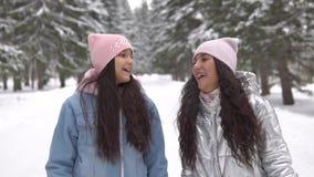 Dos novias en ropa y llevar del invierno un sombrero están caminando en el bosque en el invierno que tiene un buen humor almacen de video