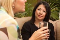Dos novias gozan del vino en el patio Imagen de archivo libre de regalías