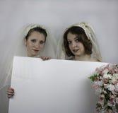 Dos novias jovenes que llevan a cabo la muestra en blanco Foto de archivo libre de regalías