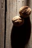 Dos nueces. Imagen de archivo libre de regalías
