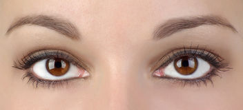 Dos ojos Fotografía de archivo