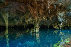 DOS Ojos Cenote Στοκ φωτογραφίες με δικαίωμα ελεύθερης χρήσης