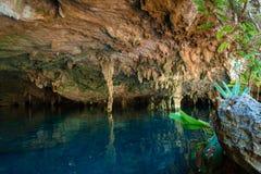 DOS Ojos de Cenote Imágenes de archivo libres de regalías